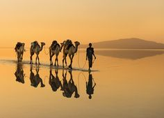 Mirror ... and silence ...... Danakil Desert, northern Ethiopia,......by Victoria Rogotneva