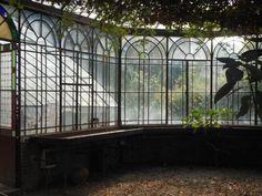 Chateau de Verderonne _ La serre
