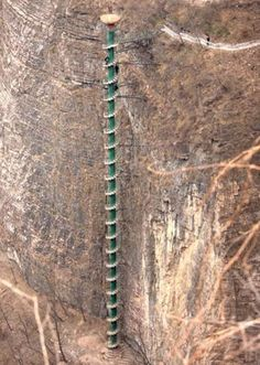 Montañas Taihang. Su altura es de casi 100 metros y destaca por su color verde.  Dannyklsiu