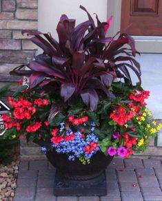 43 Enchanting Colorful Shade Garden Pots Ideas For Small Spaces 43 Enchanting Colorful Shad. Container Flowers, Flower Planters, Container Plants, Flower Pots, Flower Ideas, Succulent Containers, Fall Planters, Beautiful Gardens, Beautiful Flowers