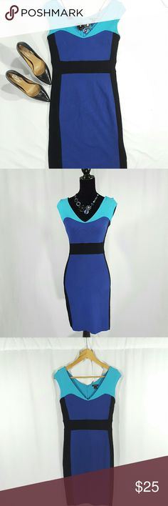 Ann Taylor Colorblock Dress Ann Taylor Colorblock Dress in a GORGEOUS color combination of purple, black, and blue. This dress is ridiculously flattering, subtly sexy, and sophisticated!!   Fabric: 69% Rayon, 28% Nylon, 3% Spandex  Details: Cap sleeves Zipper back Dry clean Flattering neckline  Excellent condition, No flaws, Non-smoking home Ann Taylor Dresses