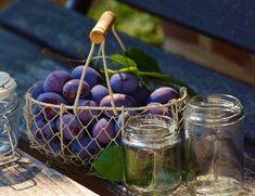 JAM RECIPE :: Summer plum jam with fresh thyme + Riesling — Anarchy in a Jar Delicious Fruit, Yummy Food, Purple Fruit, Tarte Fine, Plum Jam, Plum Tree, Sweet Wine, Vegetable Garden Design, Diets