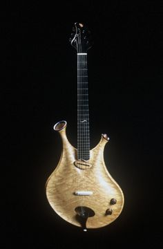 Thierry André, hollow body electric guitar