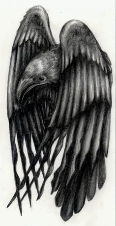 Traditional Raven Tattoo Design by Corviid
