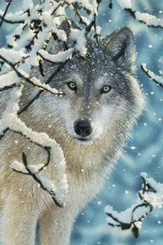 #Wolves...tattoo inspiration