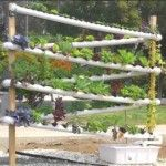Do-it-yourself Hydroponic Garden Tower – The Greatest hydroponic system increasing more than one hundred plants in 10 sq feet