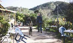 A comunidade WWOOF que vive do que a terra dá na Serra de Monchique
