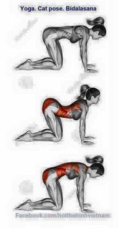 Yoga                                                                                                                                                                                 Mais