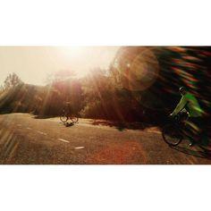 >Life now to yourunning after my parents ( 72 and 77) #run #fromwhereweride #cycling #morningride #cyclistlife #wymtm #runninggirl #girlpower #lightbro #goodmorning #goodmorninglisbon #monsantoforestpark #landscape #green #outdoorisfree  #pedalaremlisboa #floresta #forest #bicicleta #bikelove #bici #bicycle #beautifullisbon  #sunny #cyclingshots #lisboa  #parqueflorestaldemonsanto