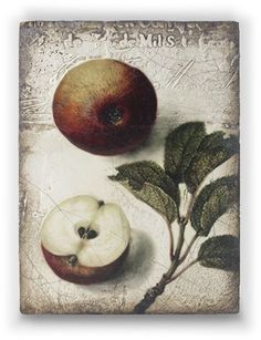 Nature's Gift tile by artist Sid Dickens out of Vancouver Canada. Memory Blocks are hand crafted plaster, finished to a porcelain-like quality, cracked to create an aged look and feel.