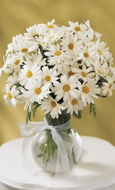 Daisy Vase-A beautifully sunny gift. Over three dozen cheery white daisies bring a bright day to someone special. Arranged in a glass vase, this sweet bouquet will be welcome for any occasion. Happy Flowers, Summer Flowers, Fresh Flowers, Beautiful Flowers, Simple Flowers, Cut Flowers, Daisy Centerpieces, Table Centerpieces, Daisy Decorations