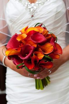 My Fall bridal bouquet. 2/3 burgundy cala lilies, 1/3 mango cala lilies.  Photo by Alexis Stein Photography of Long Island   www.alexissteinphoto.com  Bouquet:  http://www.rootsflowersandtreasures.net/