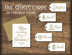 Five Senese Gift Tags & Card. 5 Senses Date Night idea. Instant download printable. Wedding gift him her husband wife spouse Valentines love Simple Gifts, Easy Gifts, Creative Gifts, 5 Gifts, Cute Gifts, Gifts For Him, Card Tags, Gift Tags, Five Senses Gift
