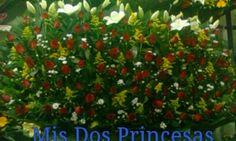 Hermoso detalle con 200 rosas