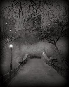 Central Park winter. Would be a great place for a first kiss. Just looks like it was made for that.