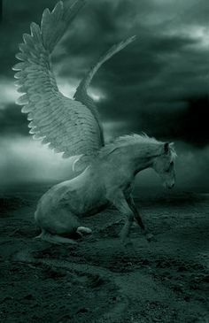 PEGASUS - (Greek mythology) the immortal winged horse that sprang from the blood of the slain Medusa; was tamed by Bellerophon with the help of a bridle given him by Athena; as the flying horse of the Muses it is a symbol of highflying imagination. Magical Creatures, Fantasy Creatures, Pegasus, Fantasy World, Fantasy Art, Winged Horse, Mystique, Mythological Creatures, Believe In Magic