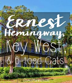 Ernest Hemingway, Key West, and Six Toed Cats: Literature Comes to the Florida Keys   Ernest Hemingway House   what to do in Key West   what to do in the Florida Keys   history in Key West