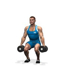 DUMBBELL SQUAT INVOLVED MUSCLES DURING THE TRAINING QUADRICEPS