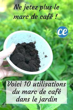 Weed Killer, Veggie Dishes, Geraniums, Horticulture, Compost, Blueberry, Gardening, Vegetable Garden, Garden