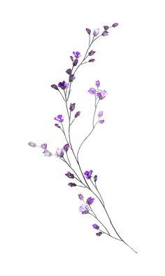 55 Breathtaking Flower Tattoos Ideas Brenda O. Cute Tattoos, Body Art Tattoos, Small Tattoos, Fake Tattoo, Small Flower Tattoos, Tattoos Skull, Flower Tattoo Designs, Tatoos, Art Floral