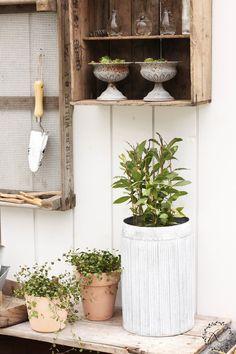 KUKKALA #puutarha #garden Ferns Garden, Greenhouse Gardening, Garden Inspiration, Ladder Decor, Tiny House, Outdoor Living, Home And Garden, House Design, Garden Sheds