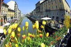 #Spring in #Milan
