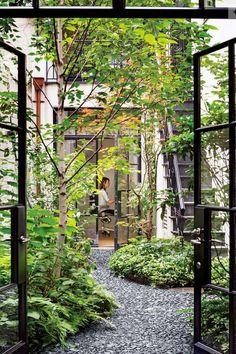 Hide ugle sunken courtyard with fluttering trees planting