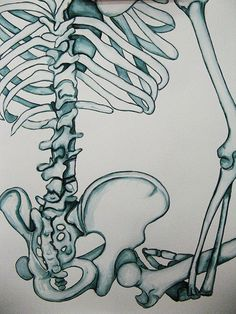 Upper School Art (Grades 7-12)  Draw a section of a skeleton and render it with brush and ink.