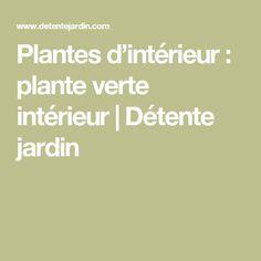 Plantes d'intérieur : plante verte intérieur   Détente jardin