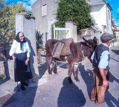�� #barbagia #asinello #autunnoinbarbagia #meanasardo #sardegna #cerdeña #honey #sardinia #bestoftheday #picofday #italy #ig_worldclub #europe #italyiloveyou #lanuovasardegna #ig_sardinia #italia #europe_gallery #bestmyphoto #pictureofday by giorgy3891 | #Folklore #Sardegna #CortesApertas