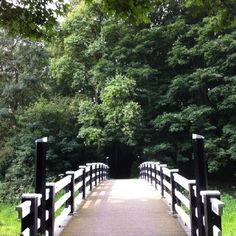 Amsterdamse Bos brug