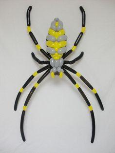 ジョロウグモ Spider (Nephila clavata) 2016.10.9