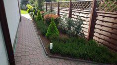 Ogród po 4 latach (wiosna)