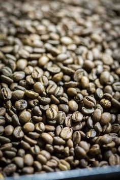 5 Origins Of Good Quality Coffee Beans That Coffee Lovers Shouldn't Miss!