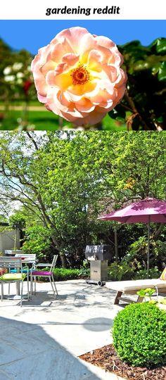 21 best Garden Gates images on Pinterest   Garden gates, Organic ...