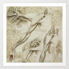 Da Vinci\'s anatomy sketches love em   Рисунок   Pinterest   Anatomy ...