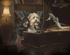 Artista cria belas e criativas imagens surreais com seus animais de estimação