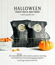 Make Your Halloween a Real Treat! | Thatch & Thistle Supply Co.