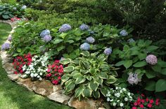 shade planter bed ideas - Google Search