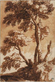 Le Paysage à Rome entre 1600 et 1650 à l'École des Beaux-Arts. Claude Gellée, dit Le Lorrain (1604-1682), Études d'arbres, Plume, encre brune, lavis brun, quelques traits de pierre noire. (c) École nationale supérieure des Beaux-arts de Paris - Jean-Michel Lapelerie. Ink Pen Drawings, Realistic Drawings, Drawing Sketches, Landscape Sketch, Landscape Drawings, Beaux Arts Paris, Tree Study, Nature Sketch, Drawing Projects
