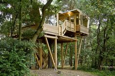 Cool Tree Houses | 15 Very Cool Treehouse Designs » Photo 12