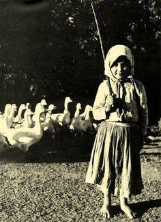 Libapásztor kislány Vintage Photographs, Vintage Photos, Hungarian Women, Old Photography, Working People, Fine Art Photo, Historical Photos, Alter, Old Photos