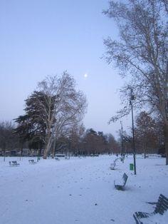 Parco Sempione in the snow