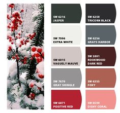 Instantly turn any picture into a palette with ColorSnap, created for you by Sherwin-Williams. Christmas Colour Schemes, Christmas Colors, Interior Paint, Interior And Exterior, Color Psychology, Mauve Color, Paint Schemes, Over The Rainbow, Vintage Holiday