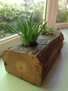 How to Create Self Watering Planters? Indoor Garden, Indoor Plants, Flower Vases, Flower Pots, Wood Pallet Planters, Rusty Garden, Old Farm Houses, Home Room Design, Diy Wood Projects