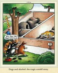 """The Far Side"" by Gary Larson.                                                                                                                                                                                 More"