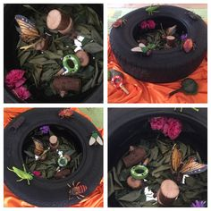 Teaching discovery and respect for natural environment with bug play. Repurposing tyre to create small world play. Leaves scattered on floor, logs for building and magnifying glasses to spy insect figures and develop inquiry.