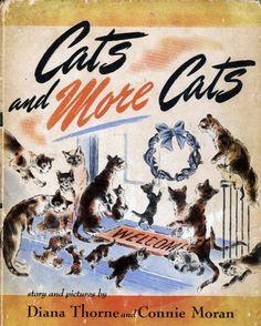 Cat Wisdom 101 | Caturday Cure For Winter Blues!