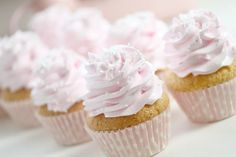 Fluffy pure vanilla cupcake with pink whipped vanilla bean frosting