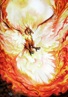 A Phoenix rises, burning the sky with its flame and embers On Arches Watercolor paper. Phoenix Dragon, Phoenix Art, Phoenix Rising, Arches Watercolor Paper, Watercolor Art, Magical Creatures, Fantasy Creatures, Legendary Creature, Mythological Creatures